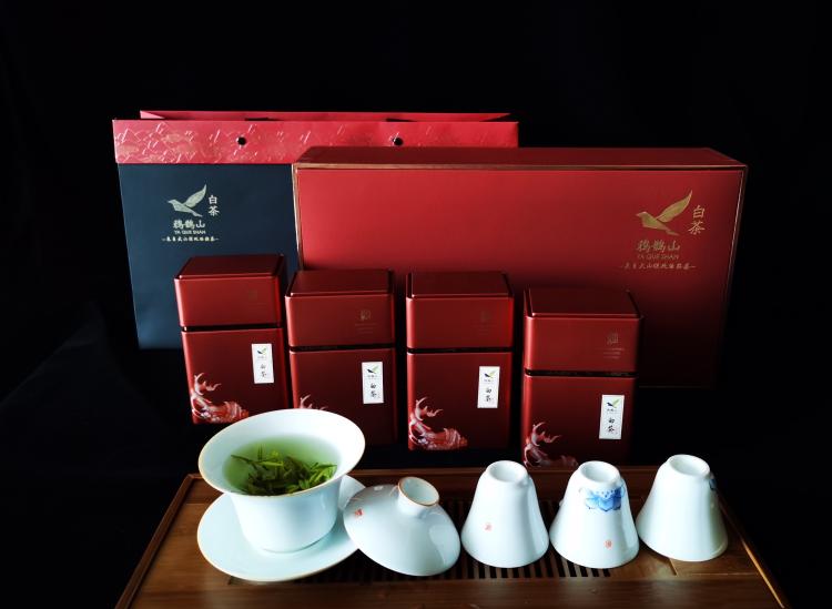 茶人必去的朝圣之地,种植寿宁高山茶的那个地方