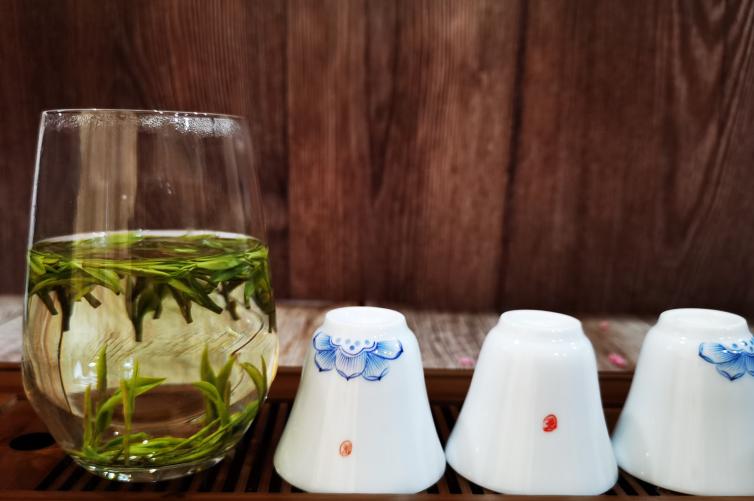 高山茶与平地茶品质有什么不同?