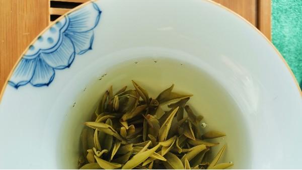 高山茶是否伤胃?这两种茶喝不得?【鸦鹊山】
