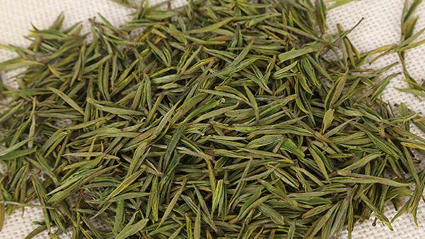 安吉白茶是白茶吗?
