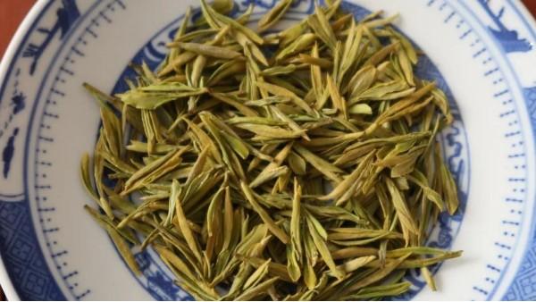 喝黄金茶禁忌,胃不好为什么不可多喝!【鸦鹊山】