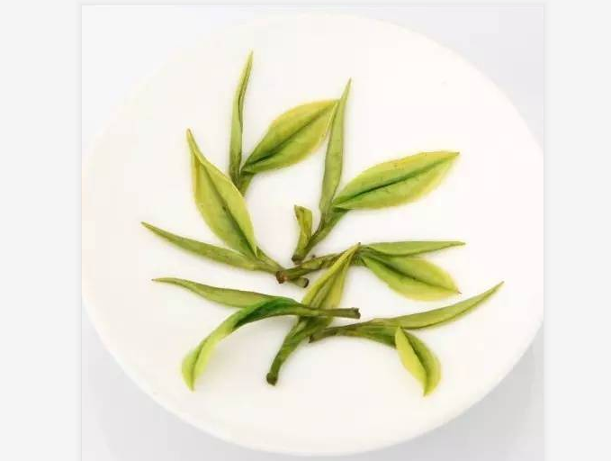 云雾茶是什么茶?