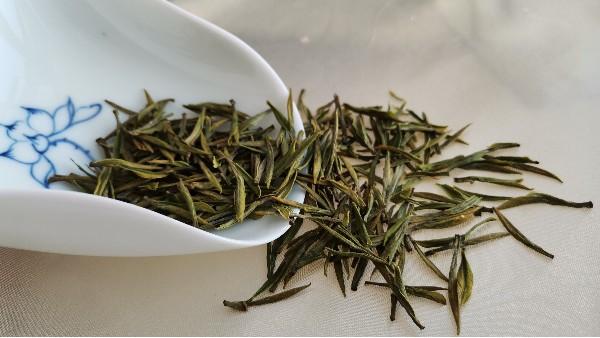 为什么高山茶比低山茶要苦?是买到假货了吗?【鸦鹊山】