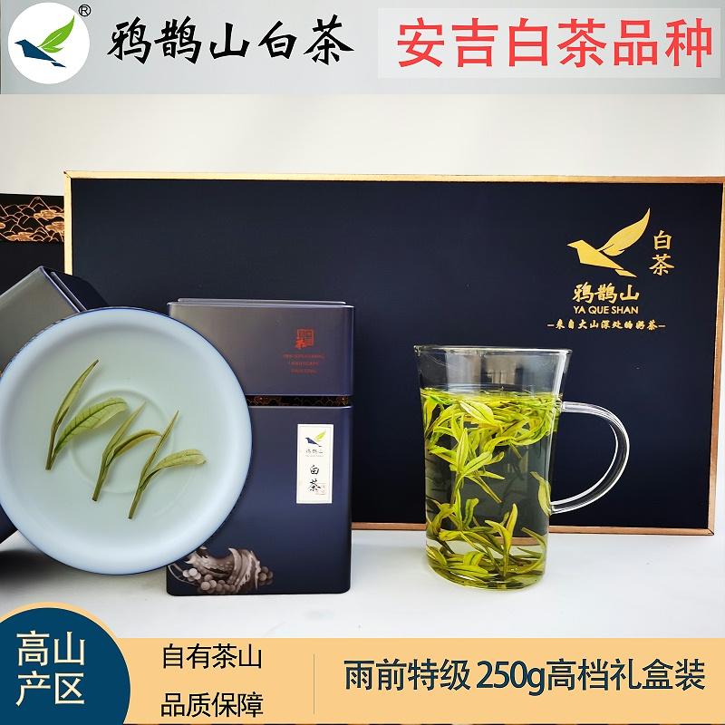 高端大气上档次茶叶礼盒:送礼就要有面子【鸦鹊山】