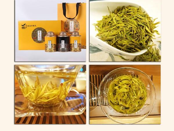 如何判断一款好的黄金茶?色香味形,缺一不可【鸦鹊山】