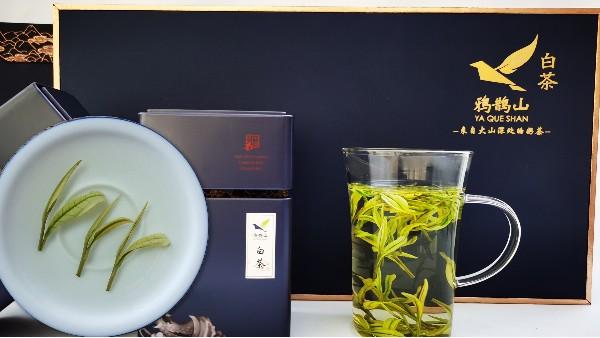 云雾茶一叶一芽,香气更好,茶汤更好喝!【鸦鹊山】