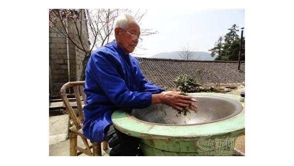 云雾茶非物质文化遗产:传承千年不减真味【鸦鹊山】