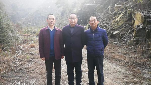 鸦鹊山-安徽省茶叶研究所丁勇所长来茶山考察指导工作