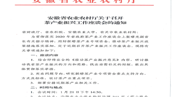 安徽省茶产业振兴工作座谈会【鸦鹊山】
