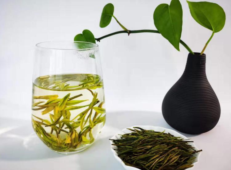 如何识得一款优质安吉高山白茶?【鸦鹊山】