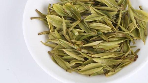哪些地方的黄金茶最好?—深山峻岭出好茶【鸦鹊山】