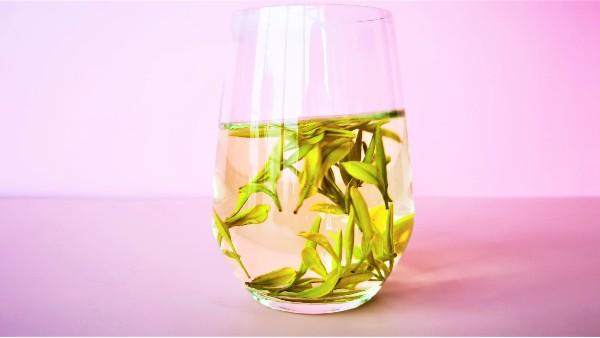 可以经常喝黄金茶吗?伤胃的不是茶!【鸦鹊山】