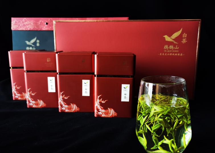 高山茶平地茶品质有什么不同?