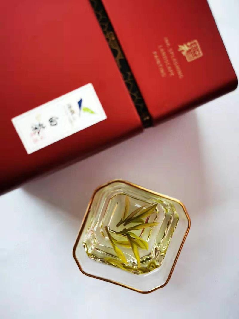 云雾茶有分春夏秋冬吗?为什么春天适合喝绿茶?【鸦鹊山】